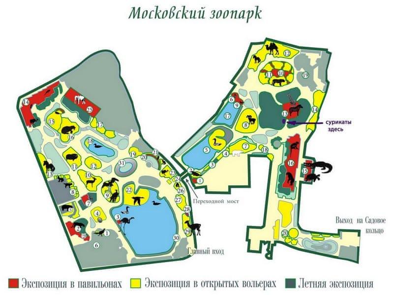 Московский зоопарк фото адрес